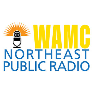 News_2020-08-07_WAMC-North-East-Public-Radio_Khyati-Joshi.jpg